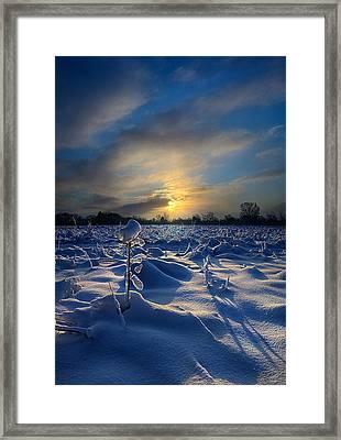 Snow Way Framed Print by Phil Koch
