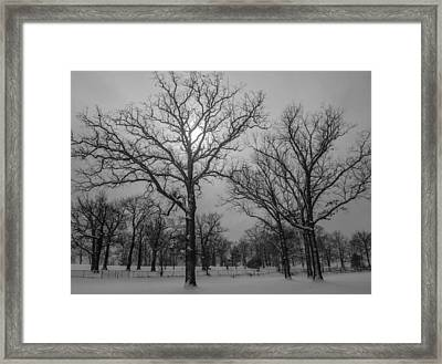 Snowy Day In January Framed Print by Samantha Morris