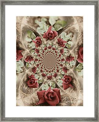 Soft Beauty Framed Print by Clare Bevan