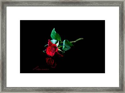 Solitude Framed Print by Torbjorn Swenelius