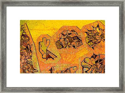 Sonoran Framed Print
