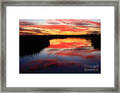 South Ponte Vedra Coast Framed Print