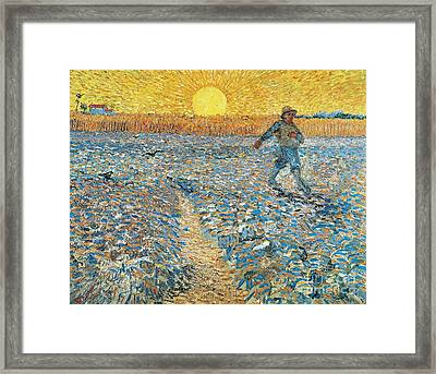 Sower Framed Print by Vincent van Gogh