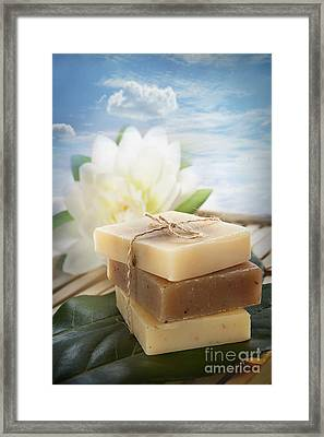 Spa Natural Soaps Framed Print by Mythja  Photography