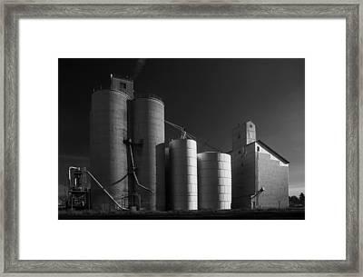 Spangle Grain Elevator Framed Print