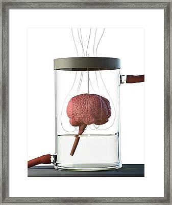 Spare Brain Framed Print by Tim Vernon