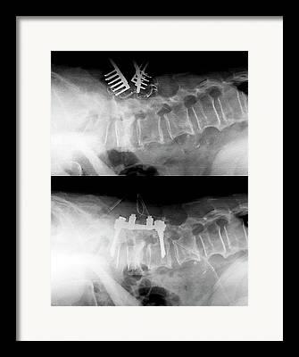 Strengthen Photographs Framed Prints