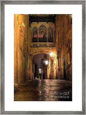 Spirit Of Gaudi Framed Print by Erhan OZBIYIK