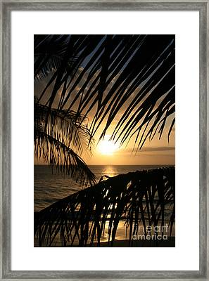 Framed Print featuring the photograph Spirit Of The Dance by Sharon Mau