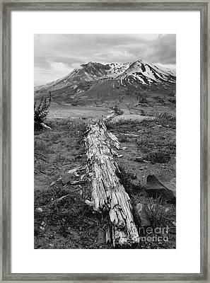 Splintered Framed Print
