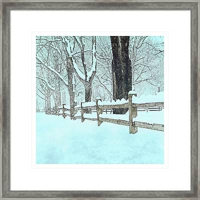 Split Rail Blues Framed Print