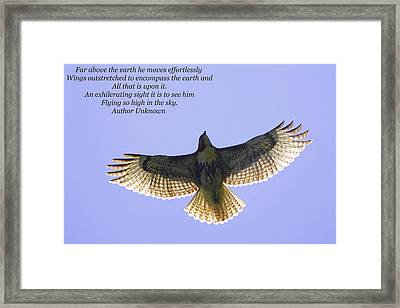 Spreading Her Wings Framed Print