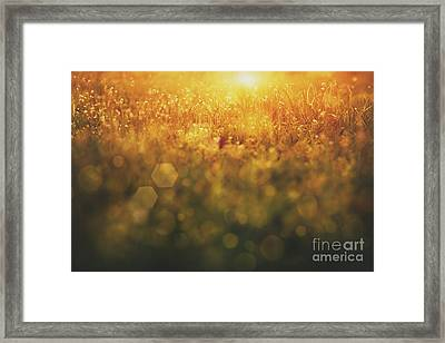 Spring Background Framed Print by Mythja  Photography