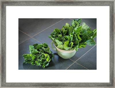 Spring Cabbage Framed Print by Aberration Films Ltd