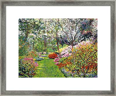 Spring Forest Vision Framed Print by David Lloyd Glover