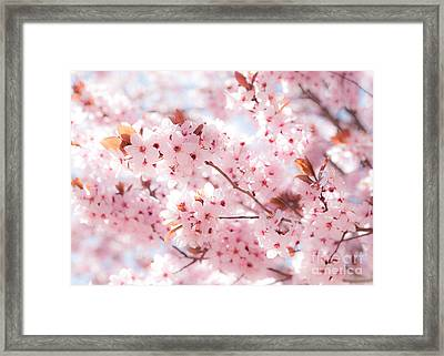 Framed Print featuring the photograph Spring by Roselynne Broussard