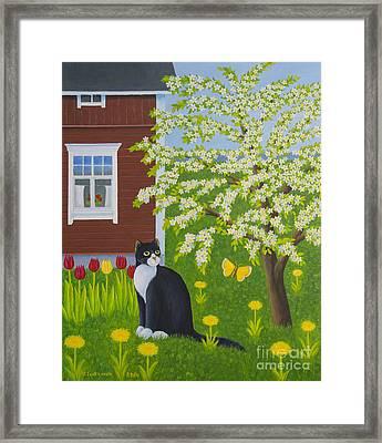 Spring Framed Print by Veikko Suikkanen