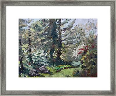 Spring 2014 Framed Print