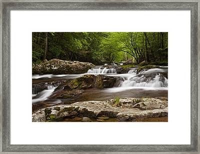 Springtime Cascades In The Smokies Framed Print by Andrew Soundarajan