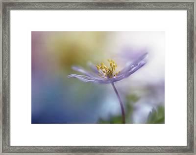 Springtime Watercolor Framed Print
