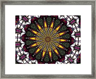 Stained Glass Kaleidoscope 1 Framed Print by Rose Santuci-Sofranko