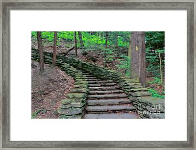 Stairway In The Woods Framed Print by Kathleen Struckle