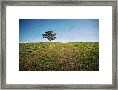 Stands Alone Framed Print by Karol Livote