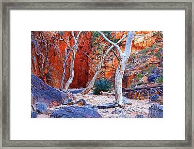 Stanley Chasm Framed Print by Bill  Robinson