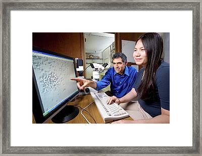 Staphylococcus Toxins Research Framed Print by Stephen Ausmus/us Department Of Agriculture
