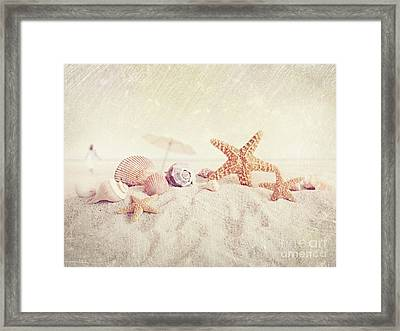 Starfish And Seashells At The Beach Framed Print by Sandra Cunningham