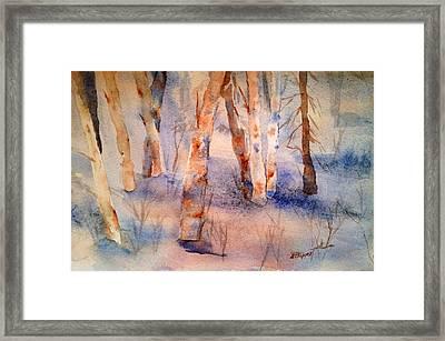 Steamboat Memories Framed Print