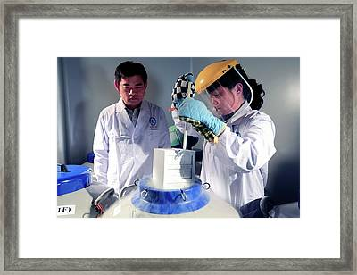 Stem Cell Storage Framed Print