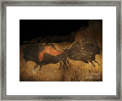 Stone-age Cave Paintings Lascaux Framed Print by Javier Truebam MSF SPL