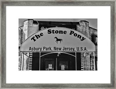 Stone Pony Framed Print