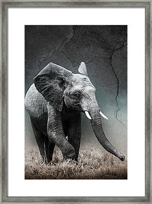 Framed Print featuring the photograph Stone Texture Elephant by Mike Gaudaur
