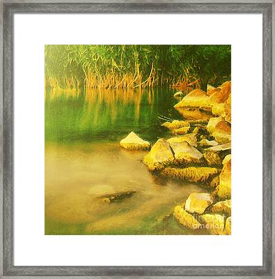 Stones In Front Of The Reed Framed Print by Odon Czintos