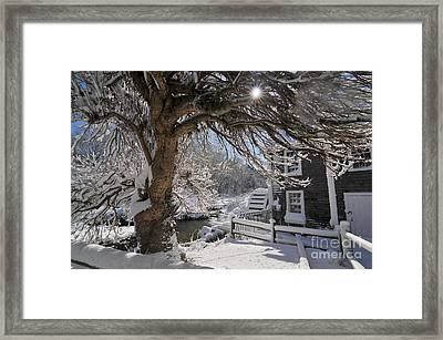 Stony Brook Grist Mill II Framed Print by Catherine Reusch Daley