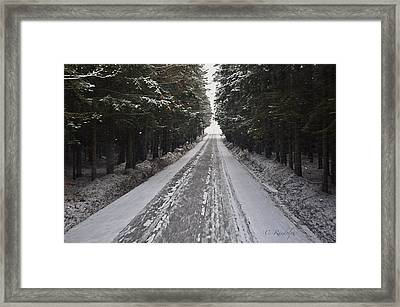 Stopping By Woods Framed Print by Cheri Randolph
