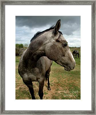 Storms Get Me Down Framed Print by Peter Piatt