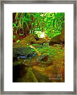 Stranded Framed Print by Jay Martin