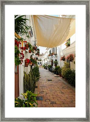 Street Of Benalmadena  Framed Print