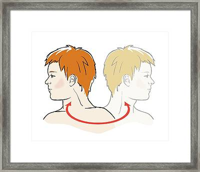 Stretching Neck Framed Print by Jeanette Engqvist
