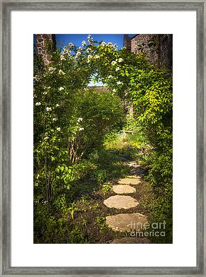 Summer Garden And Path Framed Print