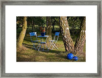 Summer Garden Framed Print by David Davies