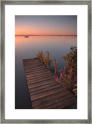 Summer Morning Framed Print by Davorin Mance