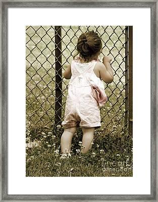 Summertime Framed Print by Gwyn Newcombe