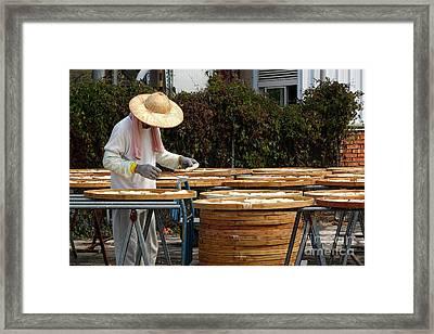 Sun Dried Noodles In Taiwan Framed Print by Yali Shi