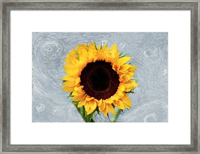 Framed Print featuring the photograph Sunflower by Bill Howard