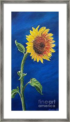 Sunflower In The Light Framed Print