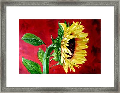 Sunflower Sunshine Framed Print by Maria Soto Robbins